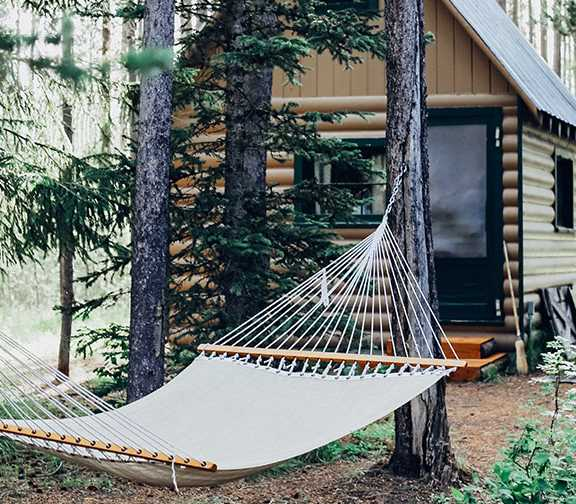 hammock-house-woods.jpg